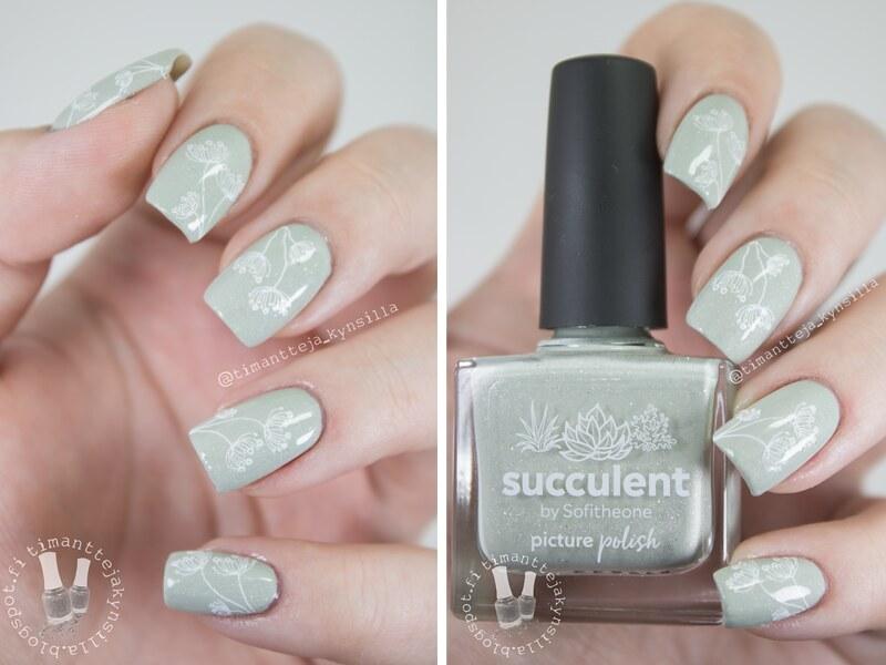succulent_leimat