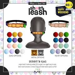 .:Short Leash:. Bunny's Gag