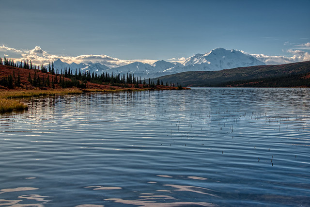 Denali is the Definition of Fine Living! (Denali National Park & Preserve)