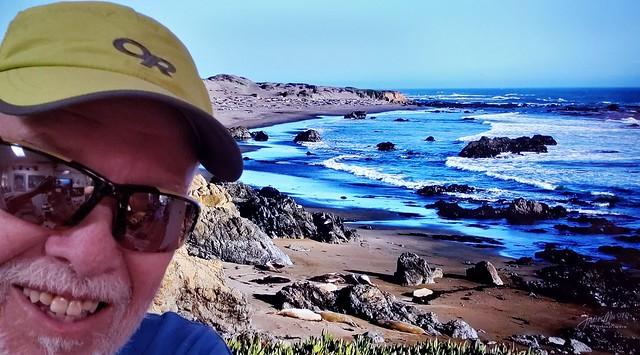 """"""" Sea Lion Beach near Big Sur, CA """""""