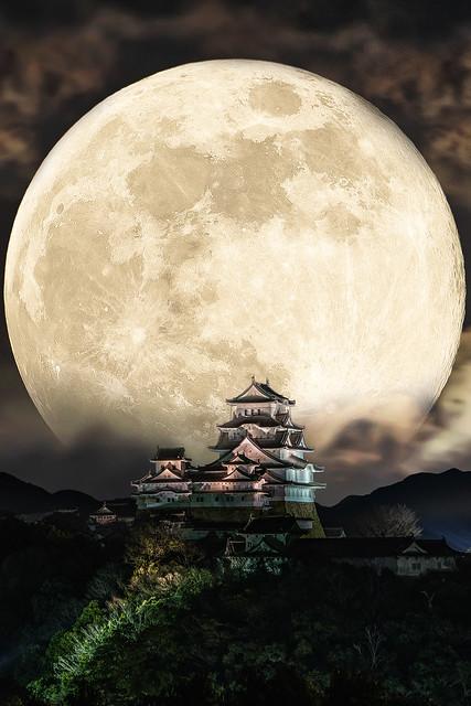 姫路城合成_DSC5626-2-2