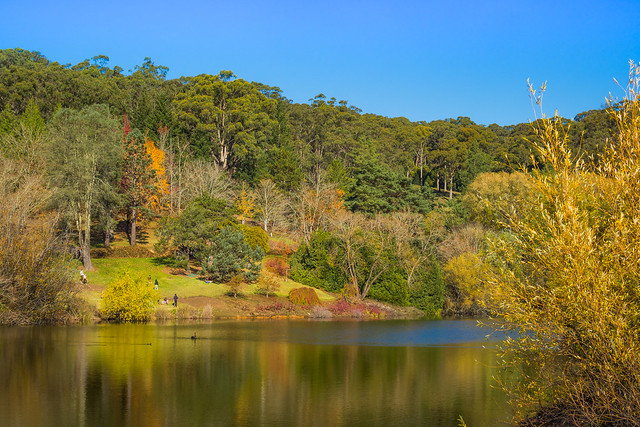 Mount Lofty Gardens