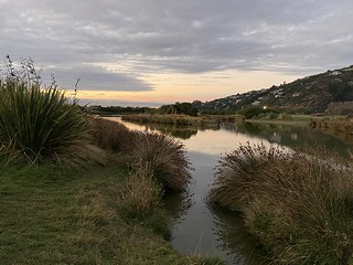 Ferrymead ponds this evening | by kevinprince3