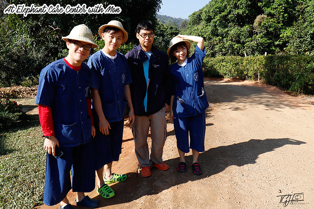 Maesa Elephant Camp Mon