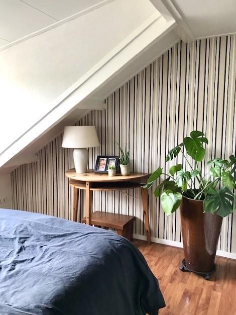 Landelijke slaapkamer met schuin dak