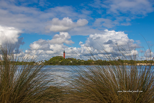lighthouse jupiter light jupiterlighthouse inlet jupiterinlet water sky bluesky clouds cloiudy weather landscape seascape grass tallgrass grasses nature mothernature outdoors palmbeachcounty florida usa prk dubois duboispark