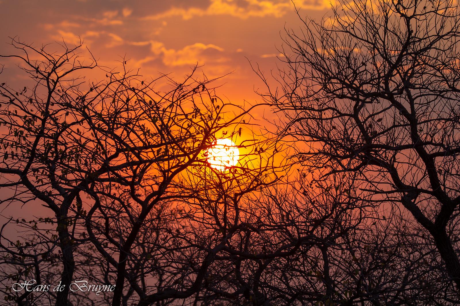 Sunset at Etosha