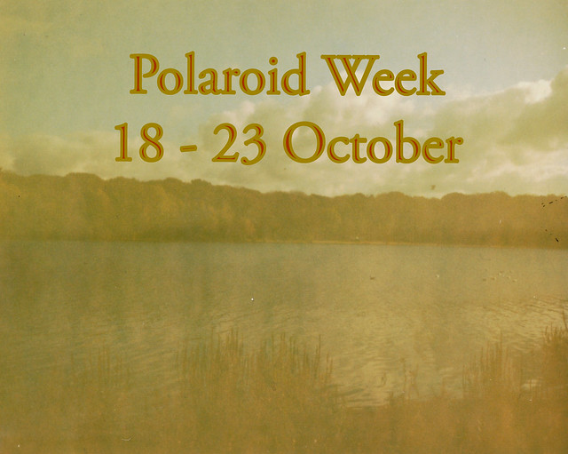 🍁 Polaroid Week