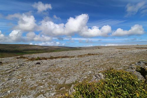 burren ireland countyclare coclare cloud clouds bluesky rock stone rocks stones limestone landscape