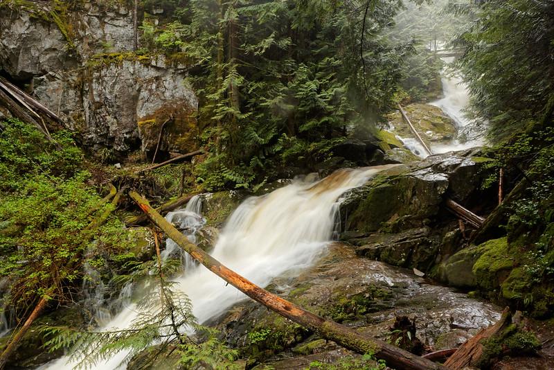 Woodland Falls, 17 May 2020
