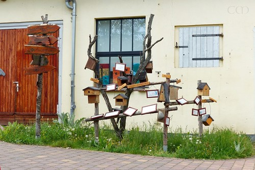 Bird model houses! :)