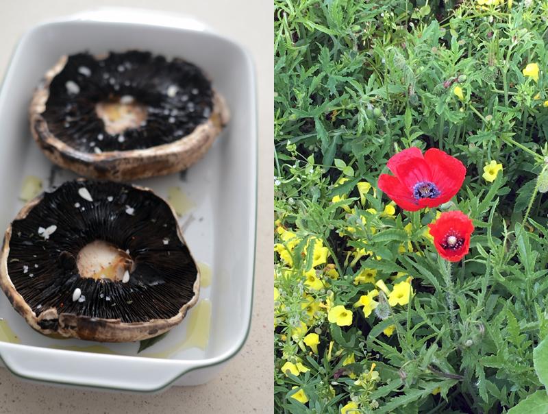Cogumelos Portobello com recheio de beterraba e parmesão