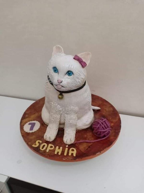 Cat Cake by Ana Mayorga Molina