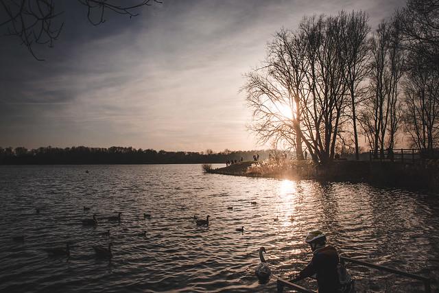 Lac du Héron, Villeneuve d'Ascq, France