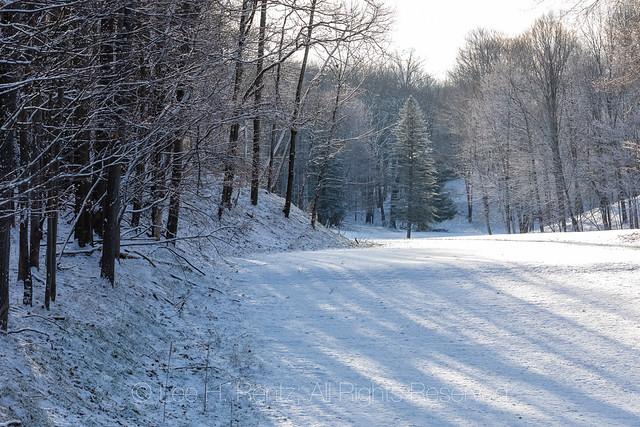 April Snowstorm in Michigan