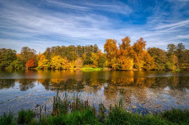Autumn Pond in Kuzminki