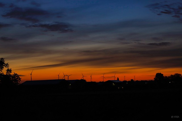 Windmills in the morning sky.  Windmolens