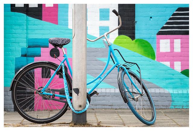 Camouflaged swap bike