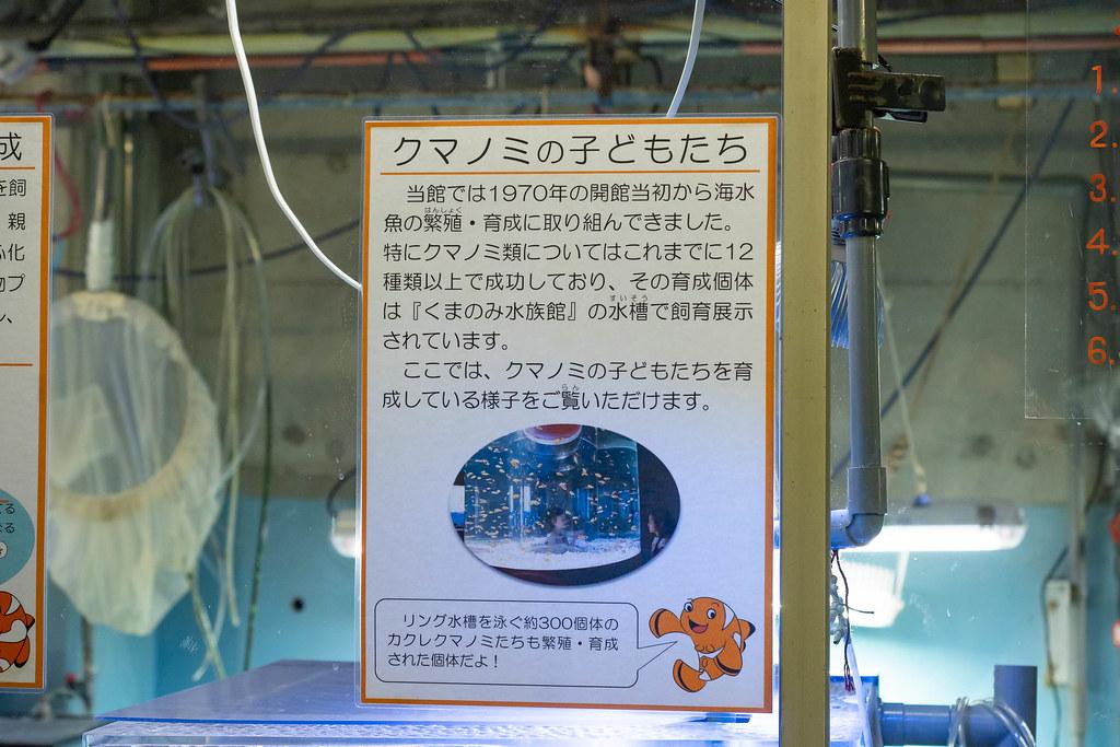 Tokaidai_Marine_Science_Museum-19