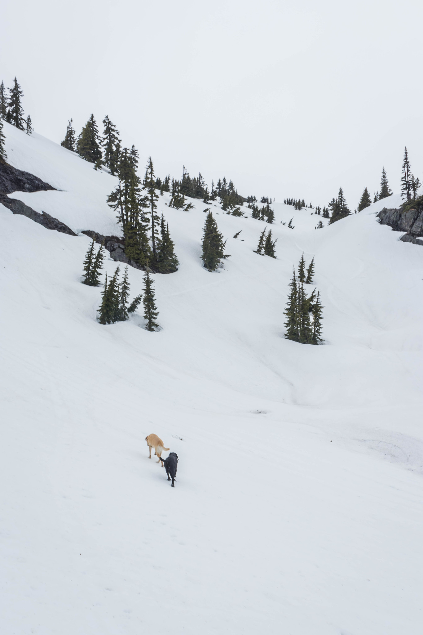 The final stretch on Rampart Ridge