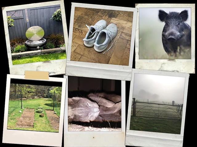 Calm collage 12