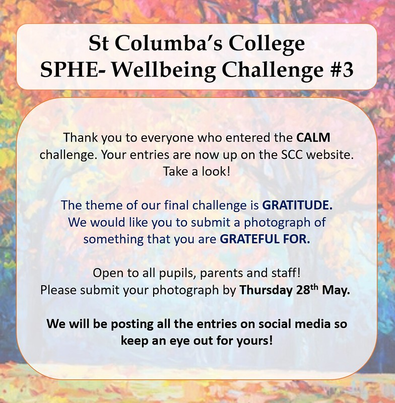 Wellbeing Challenges