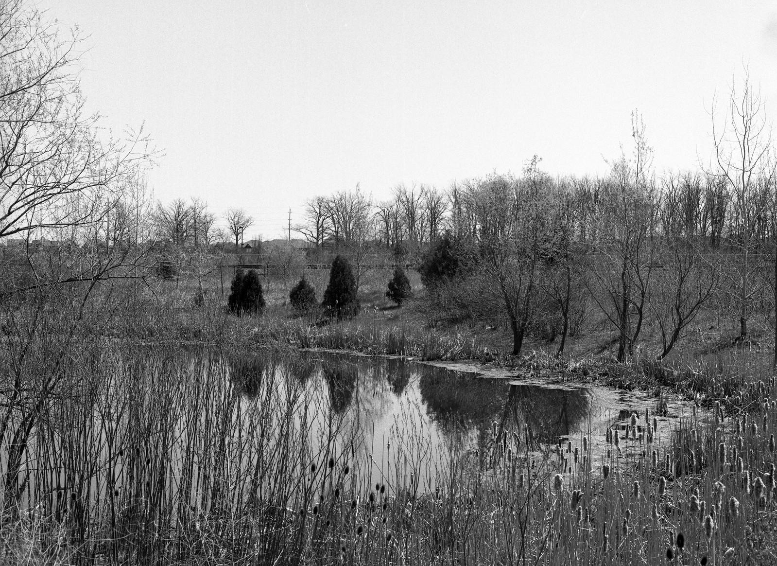 Drainage Pond