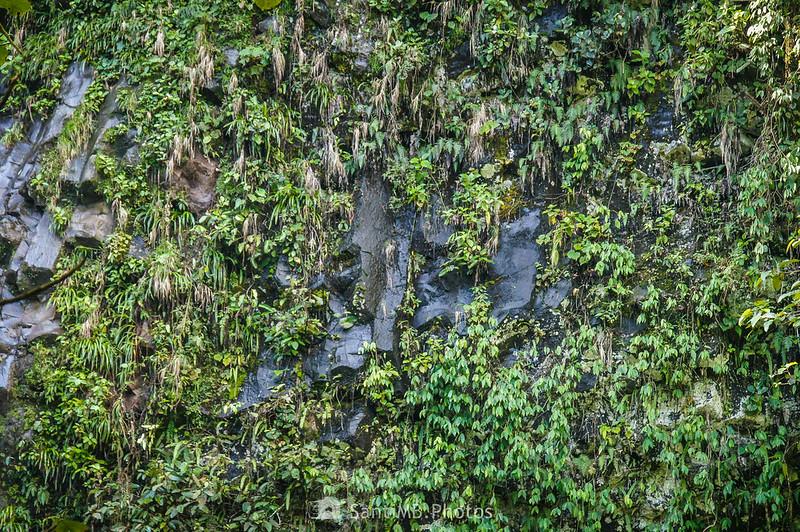 Paredes de basalto en la Catarata Río Fortuna