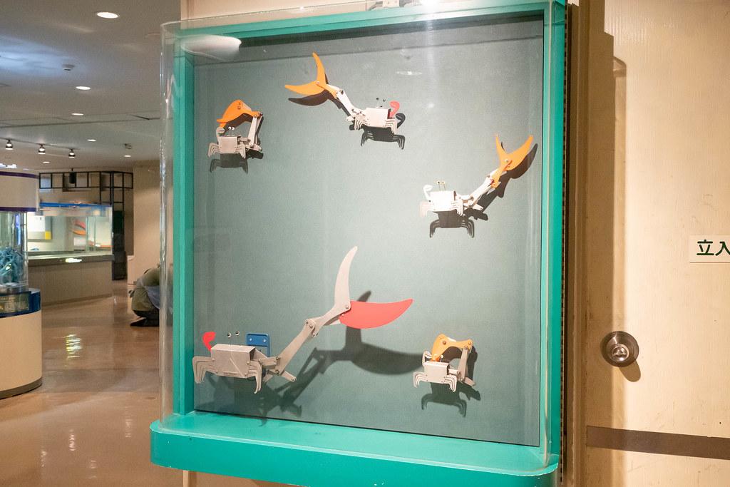 Tokaidai_Marine_Science_Museum-27