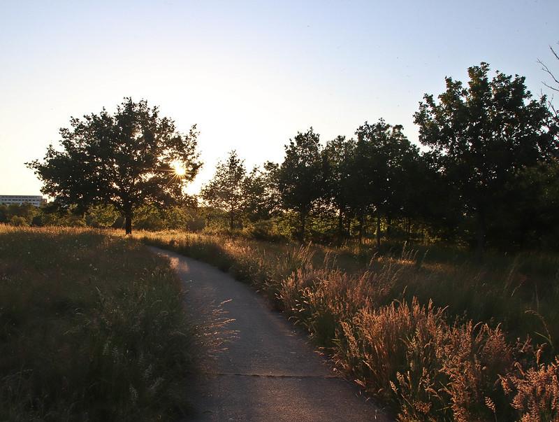 Chemin au coucher de soleil