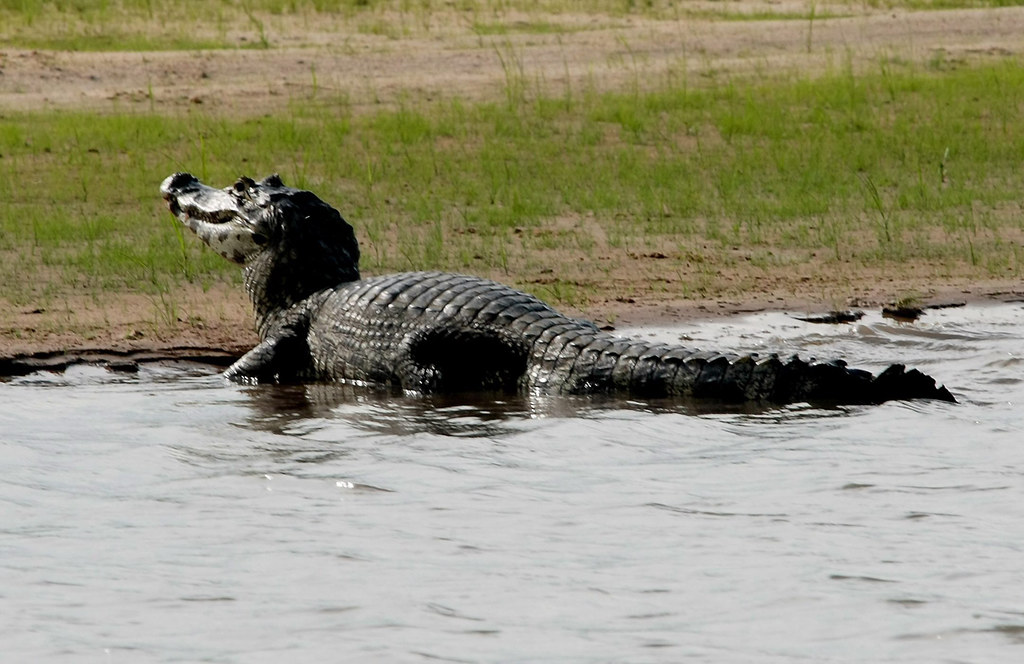 Pantanal Matogrossense, Serra do Amolar