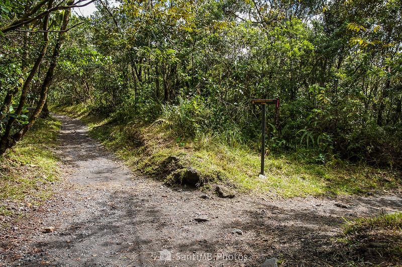 Cruce del Sendero de las Coladas del Volcán Arenal con el Sendero del Ceibo