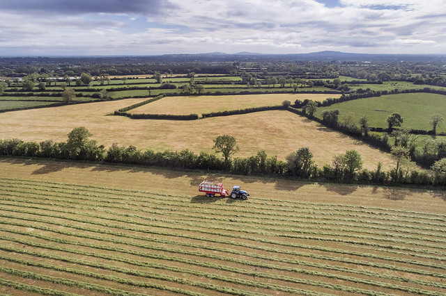 Harvesting. Newcastle west, Limerick