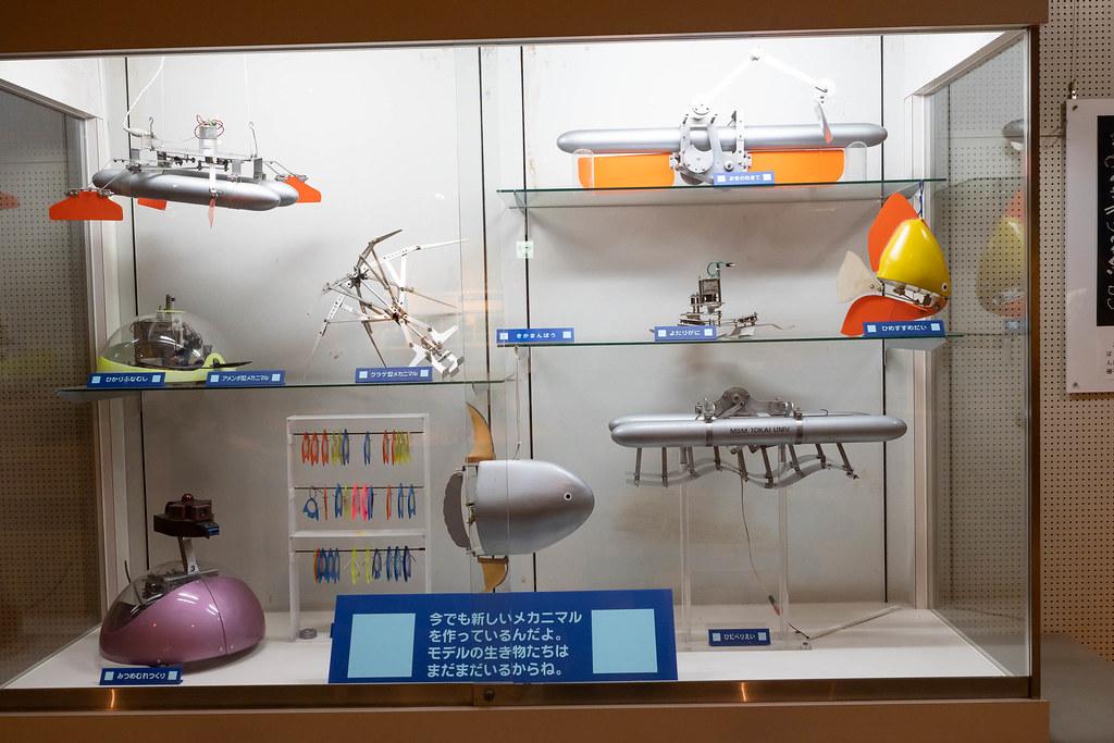 Tokaidai_Marine_Science_Museum-28