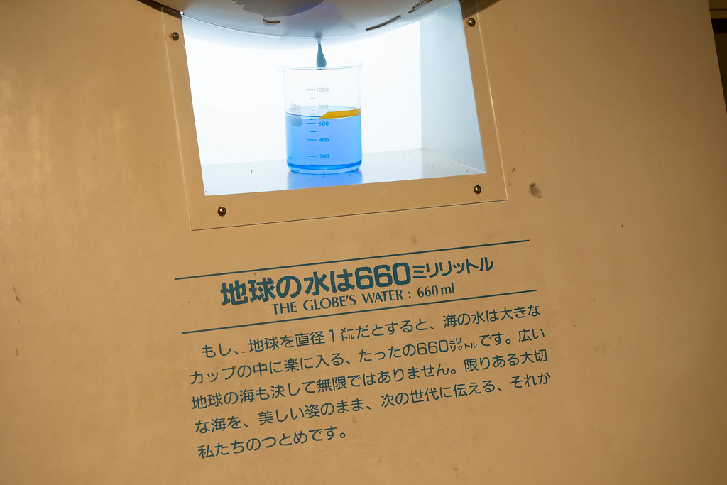 Tokaidai_Marine_Science_Museum-26