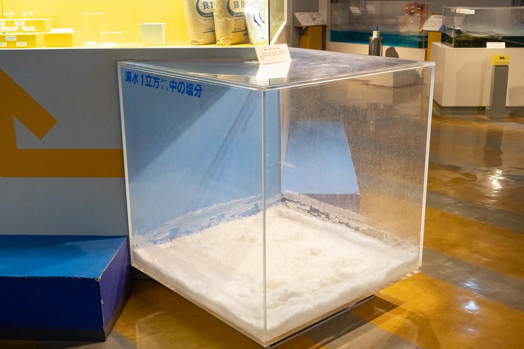 Tokaidai_Marine_Science_Museum-22