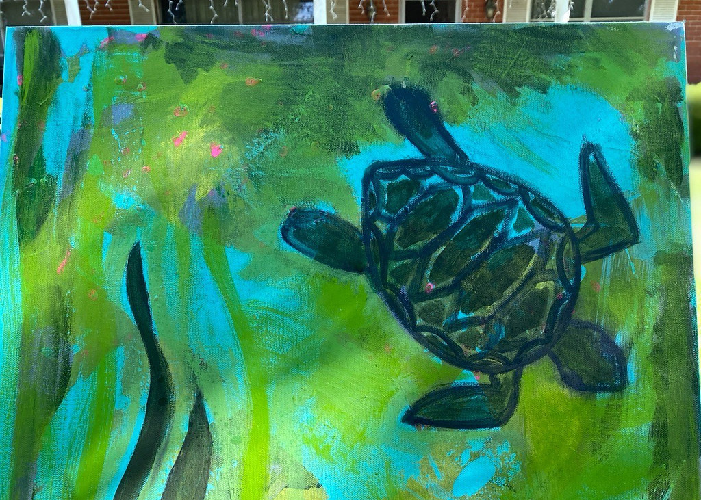 Turtle art donation