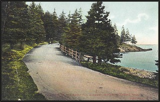 c. 1907 Montreal Import Company (No. 917) Postcard - View of the Beautiful Scenery in Point Pleasant Park, Halifax, Nova Scotia