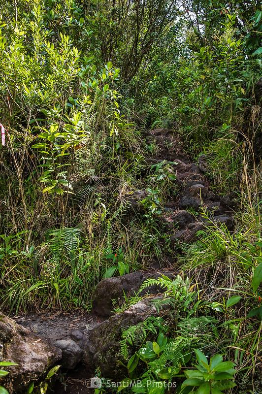 Camino al Mirador de la Colada de 1992 del Volcán Arenal
