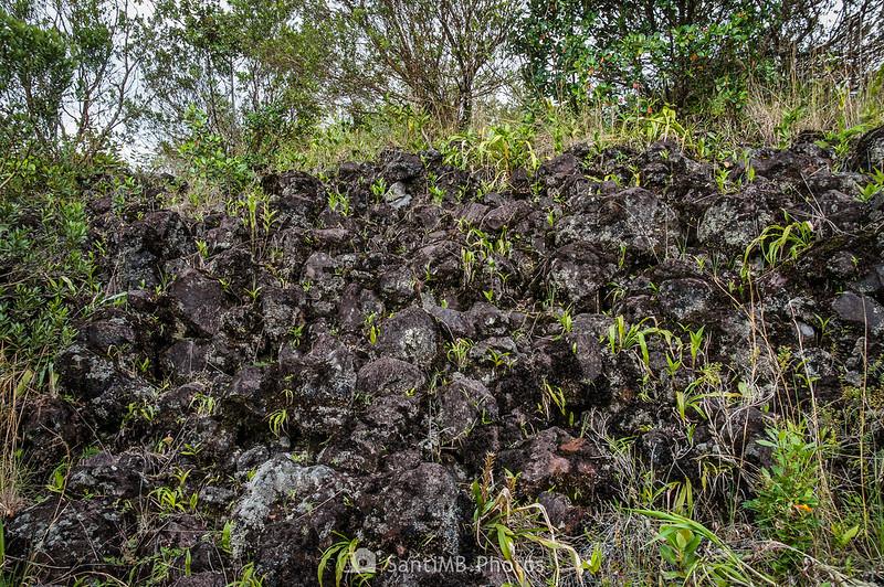 Lava de la colada de 1992 del Volcán Arenal