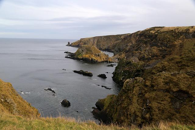 The coast near Melrose