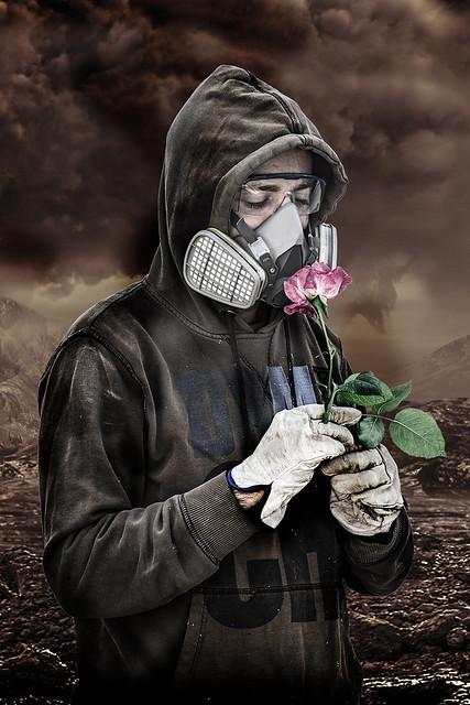 ¿A qué huele una rosa?