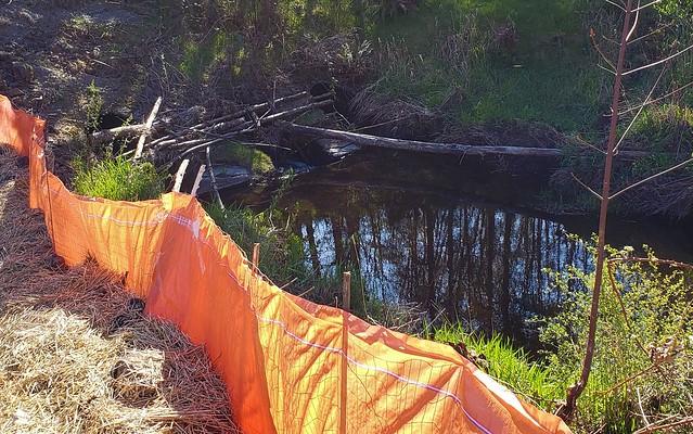 US 101 - Coffee Creek - Remove Fish Barrier
