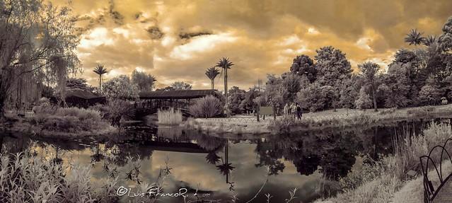Panoramica en infrarrojo 720nm infrared lake view 720nm