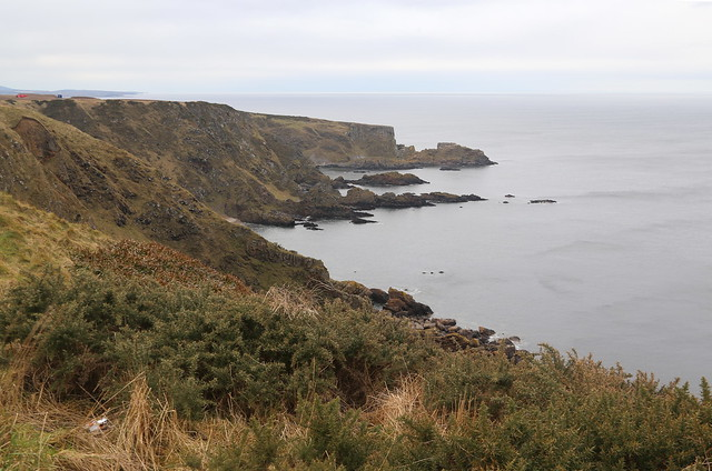View from Stocked Head near Melrose