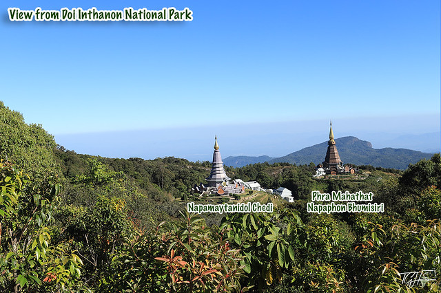 Chiang Mai Local Tours Doi Inthanon National Park