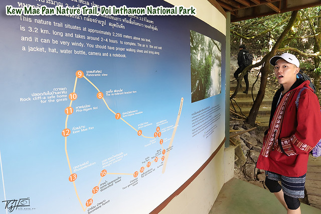 Chiang Mai Local Tours Kew Mae Pan Nature Trail Doi Inthanon National Park