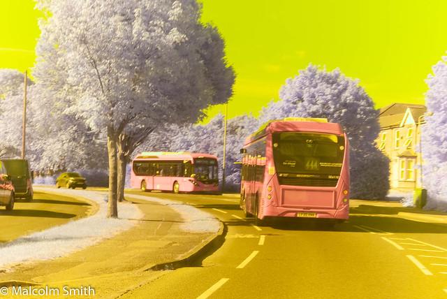 Larkshall Road May 2020