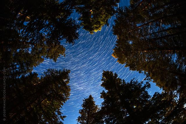 Star Trails Over Banff National Park