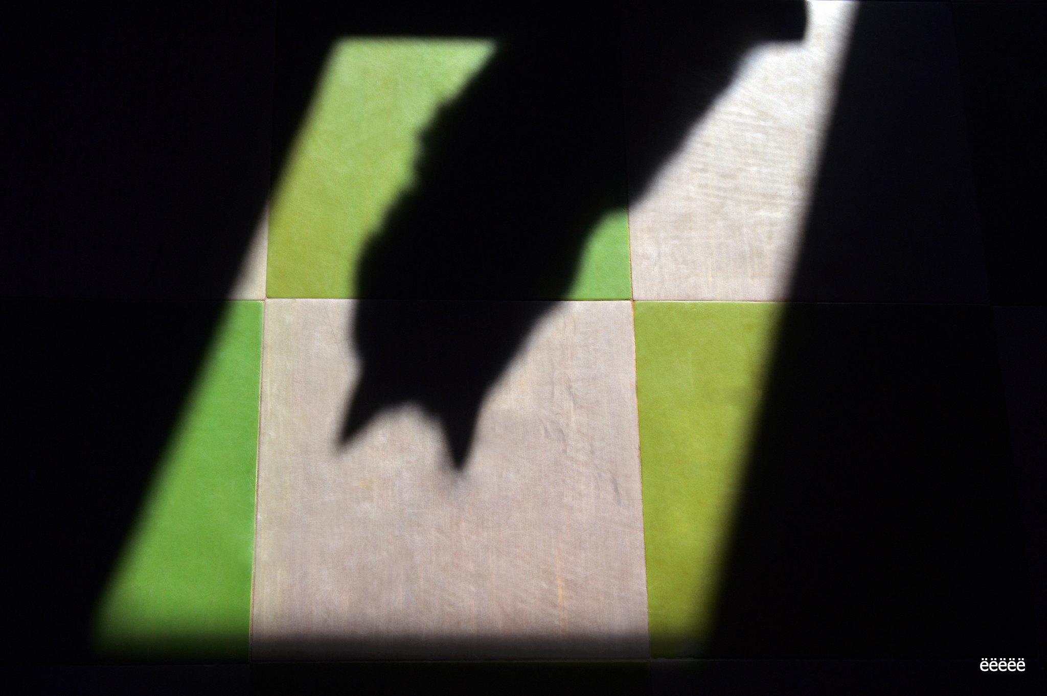 Sweet Shadow